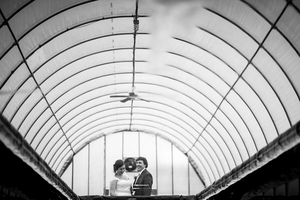 jq-dickinson-salt-works-wedding-greenhousejq-dickinson-salt-works-wedding-greenhouse