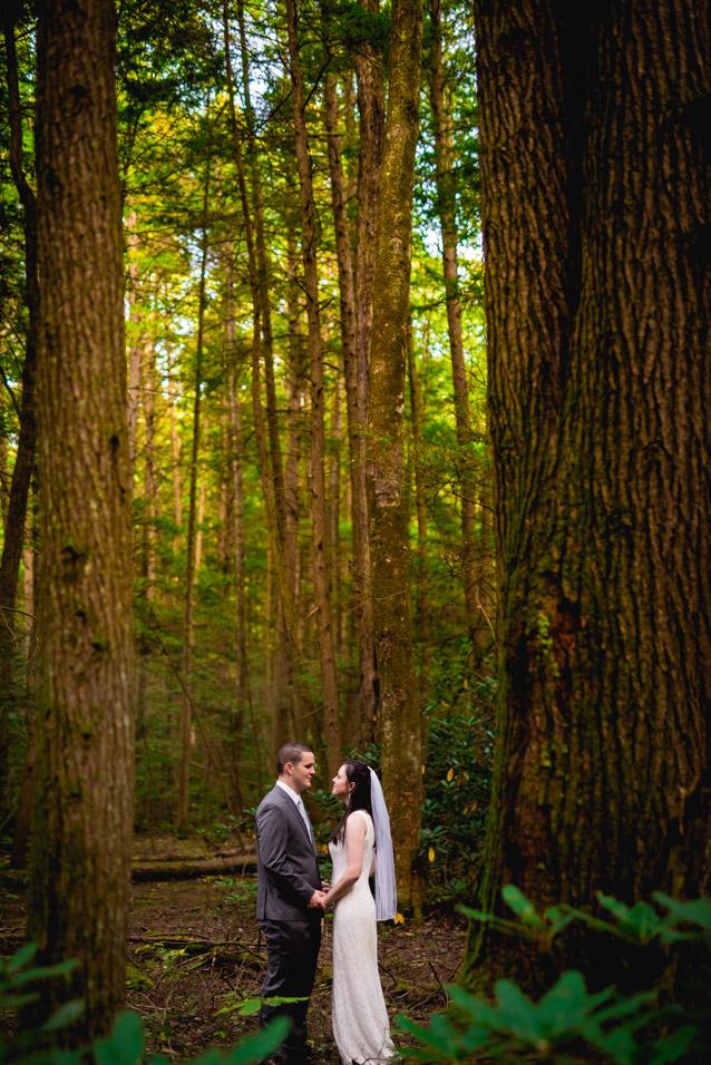 fayetteville-wv-wedding-photographer_-3
